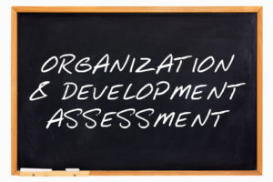 Organization and Development Assessmen